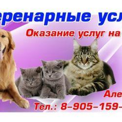 Ветаптека и ветуслуги_10