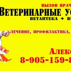 Ветаптека и ветуслуги_1