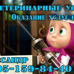 Ветаптека и ветуслуги_2