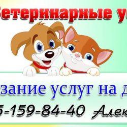 Ветаптека и ветуслуги_7