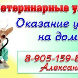 Ветаптека и ветуслуги_9