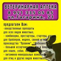 Ветаптека_1