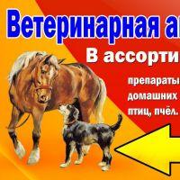 Ветаптека_2