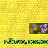 Медовый теремок_2